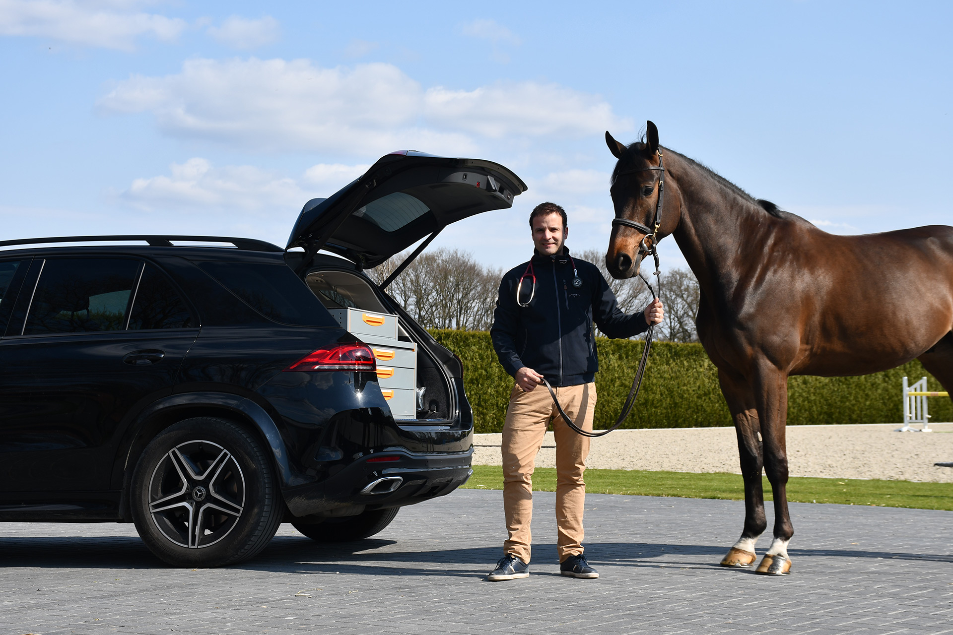 othopedic-specialist-sports-horses