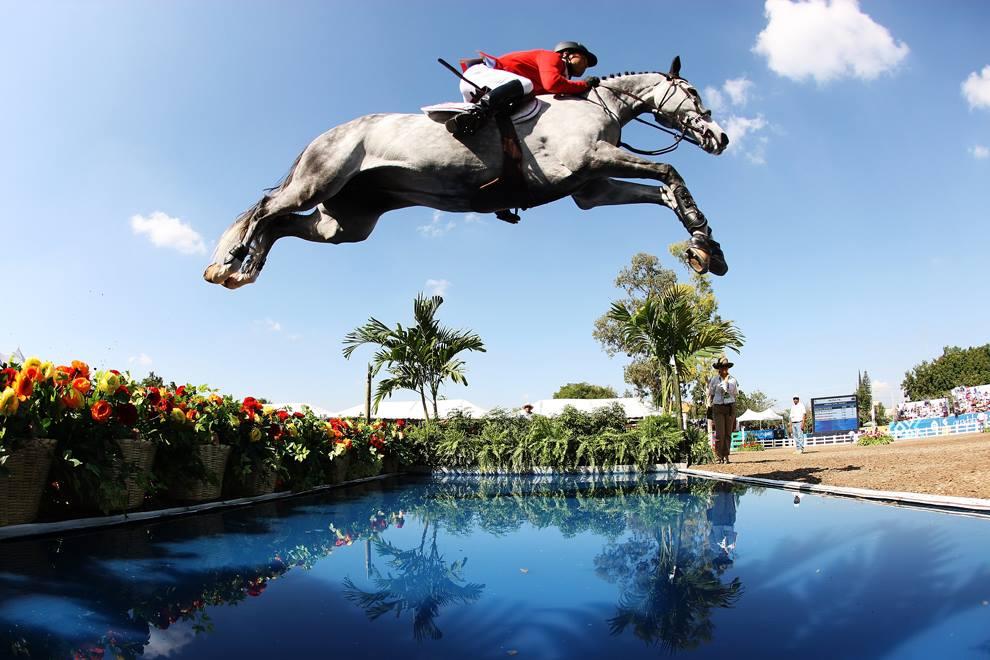 horse-sport-medicine