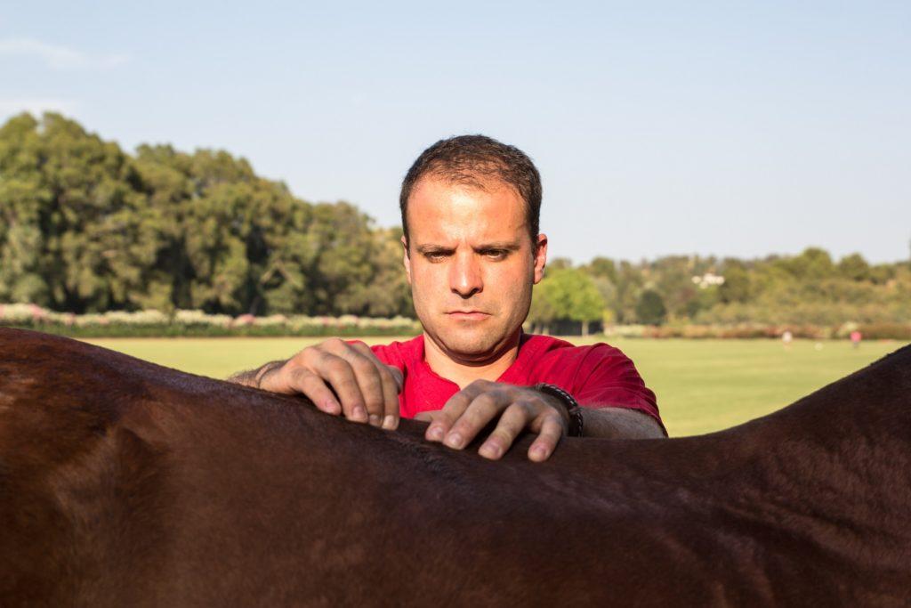 KISSING SPINE IN HORSES - horse vet belgium